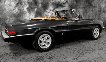 1984 Alfa Romeo Spider Veloce full